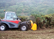 Scrub and Gorse Clearance